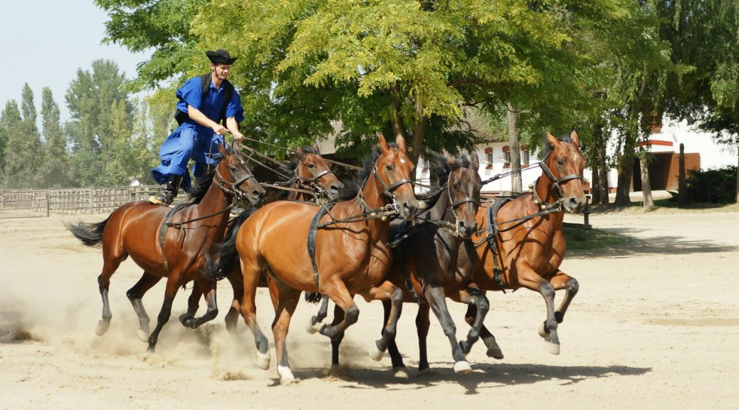 Puszta Great Plains tour with horse show from Budapest